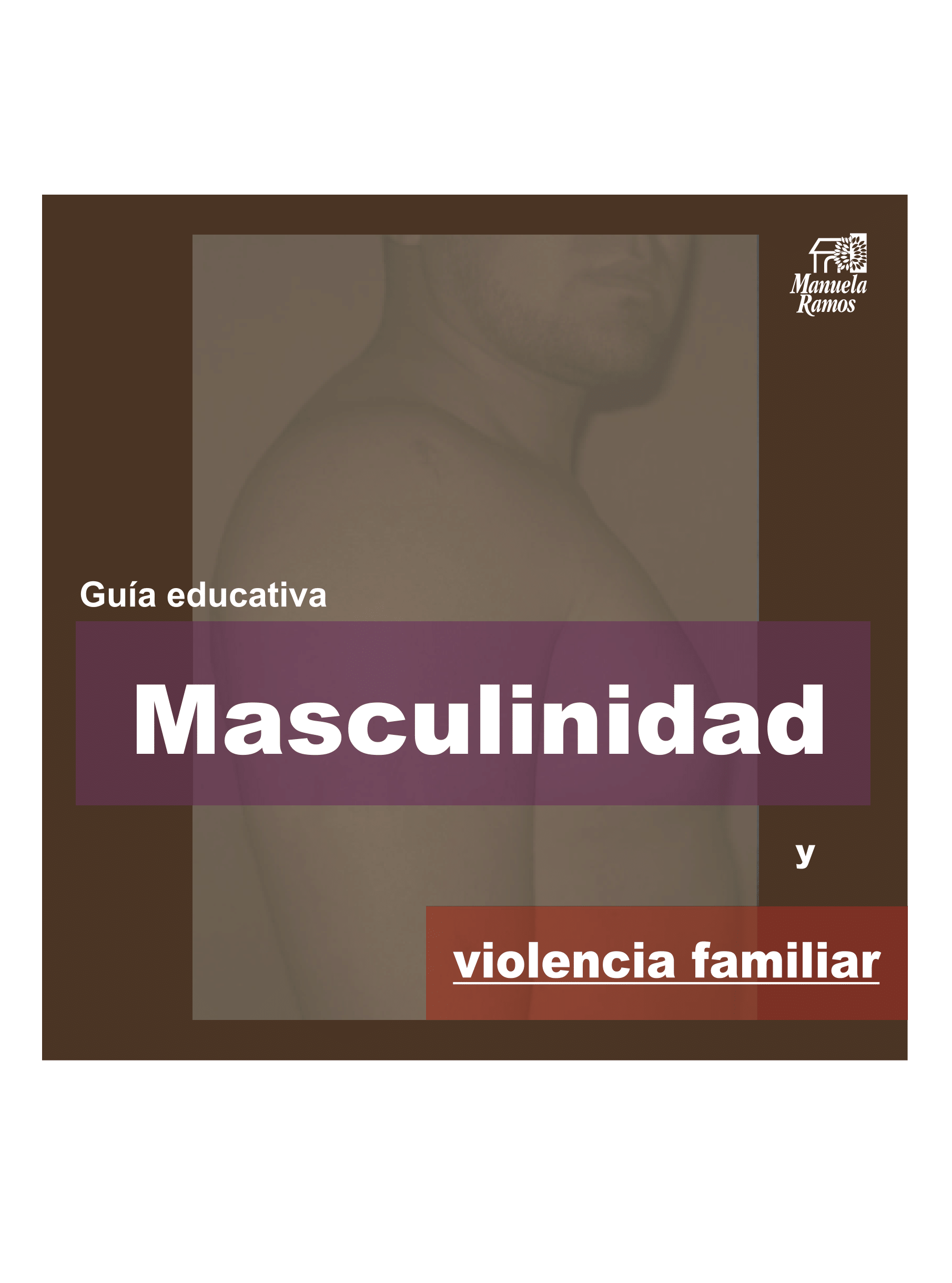 "Guía educativa ""Masculinidad y violencia familiar"""